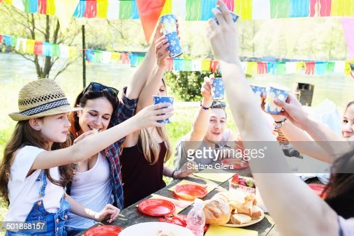 Group of friends toasting at a picnic