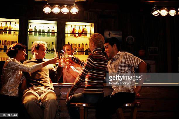 Group of friends toasting at bar