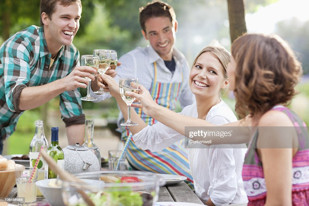 Group of friends toasting wine glasses at picnic : Stock Photo