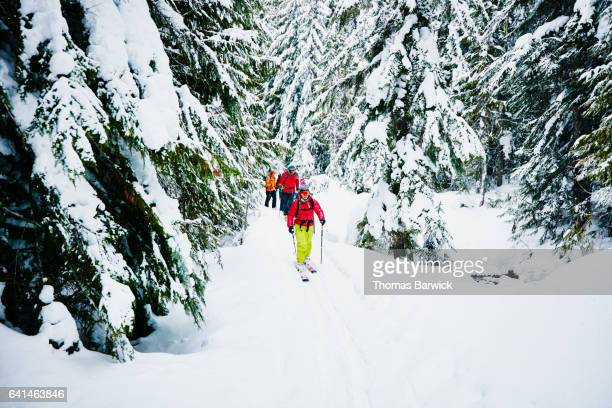 Group of friends traveling on trail in forest during backcountry ski tour