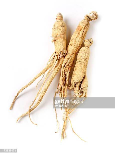 Image Result For What Kind Of Ginseng Is The Best