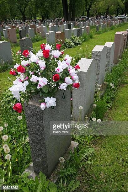 Group of Grave Stones in Cemetary