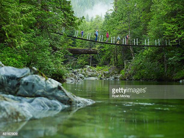 Group of hikers on suspension bridge