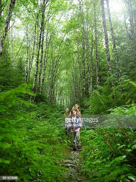 グループのハイキングトレイル沿いに散歩をします。