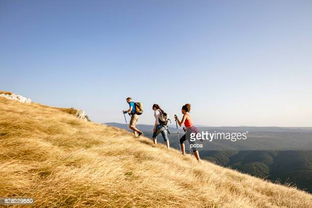 Group of hikers walking  in the mountain