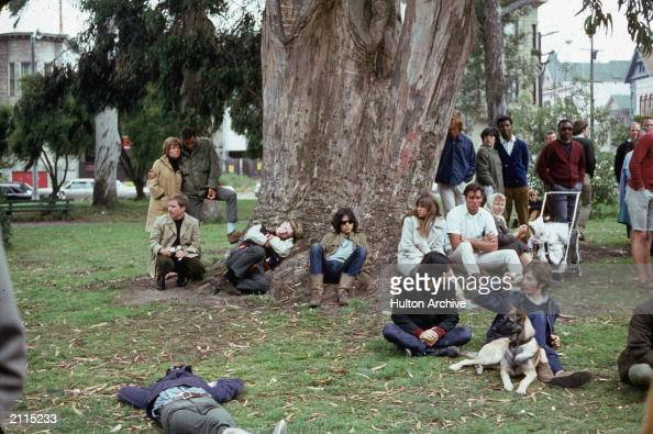 A group of hippies gathered around a large tree during a 'happening' at Golden Gate Park San Francisco California 1960s