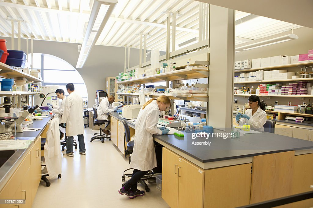 Group of laboratory technicians at work : Stock Photo