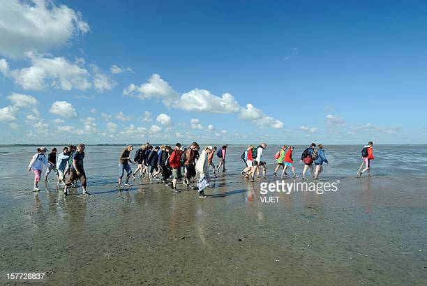 Group of mud flat hikers in the Netherlands