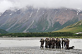 June 17, 2009 - A group of Navy SEAL's prepares to cross Phelan Creek during Northern Edge 2009. Northern Edge '09 is a large scale exercise hosted in Alaska to improve command, control and communicat
