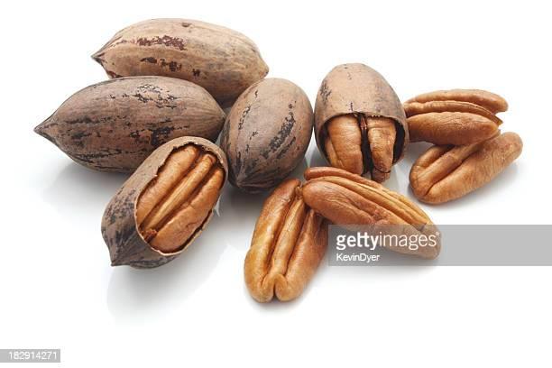 Pecan Nüsse, isoliert auf weißem Hintergrund