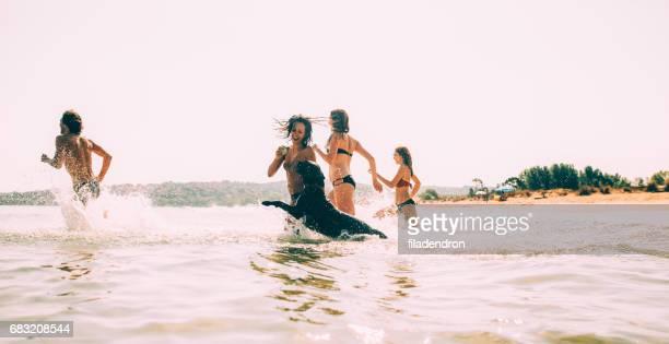 Gruppe von Personen und ein Hund, Schwimmen im Meer