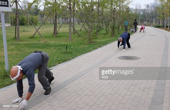 A group of people climb on hands and feet for exercise at Zhengzhou Shang City Archaeological Site Park on October 22 2015 in Zhengzhou Henan...