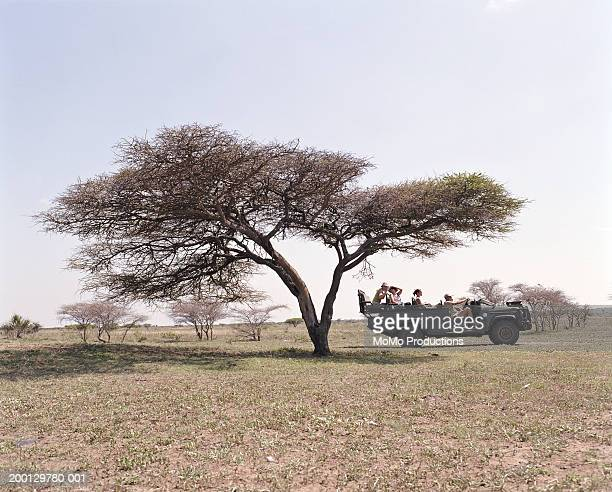 Group of people on safari vehicle, side view