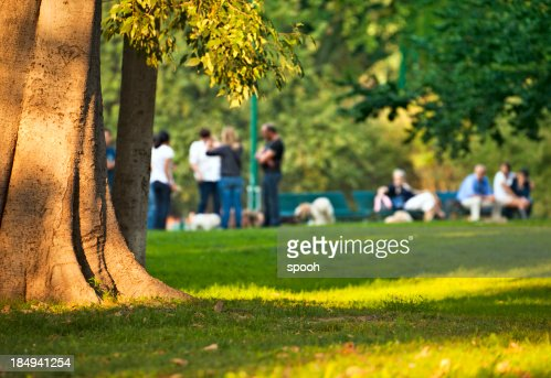 Group of people relaxing among trees in city park.