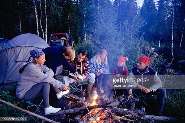Group of people sitting at campfire