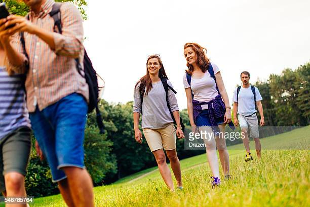 Group of people walking in forest in summer