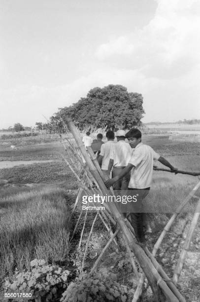 A group of refugees one who looks back over his shoulder for a last view of his homeland crosses a bamboo bridge into India