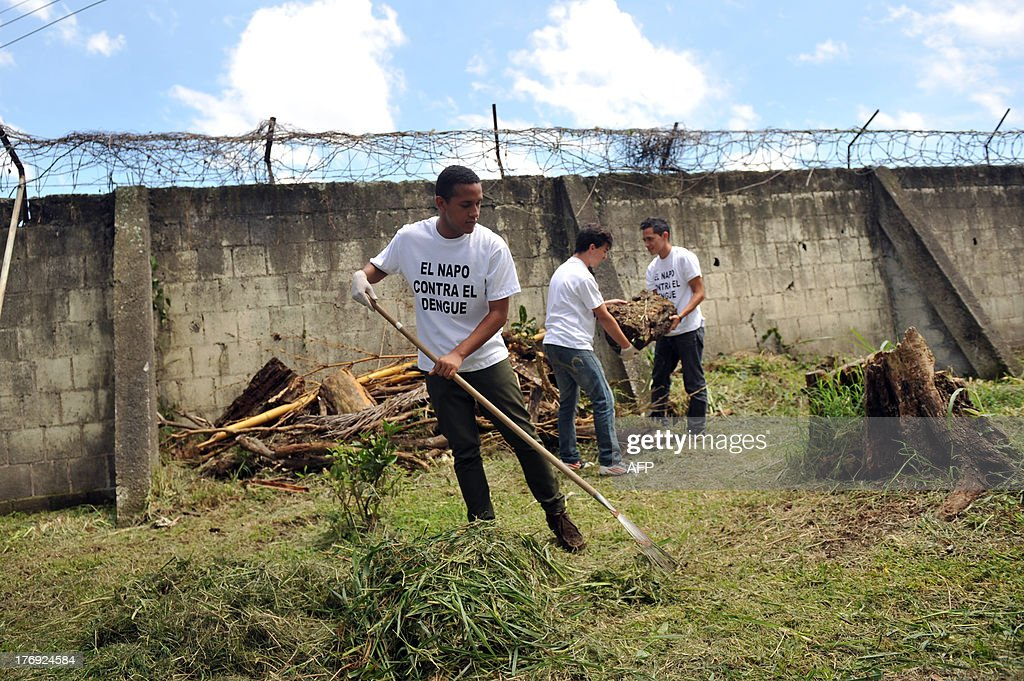 A group of students from the Napoleon Quesada secondary school clear the school yard to eliminate possible breeding sources for the Aedes aegypti mosquito that carries the virus which causes dengue, as part of the 'National Educational Crusade Against Dengue', in San Jose, on August 19, 2013. An unusually potent outbreak of dengue fever had killed at least 26 people and infected nearly 40,000 more in 2013 by July in Central America, where the mosquito-born illness is endemic. The t-shirt reads 'The Napo (Napoleon Quesada secondary school) Against Dengue'. AFP PHOTO/Hector RETAMAL
