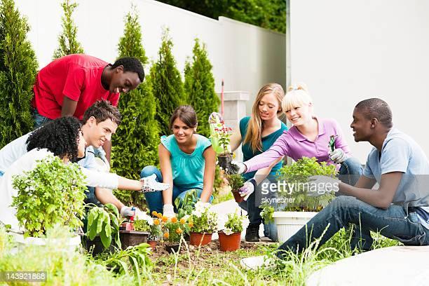Group of teenage friends planting flowers.