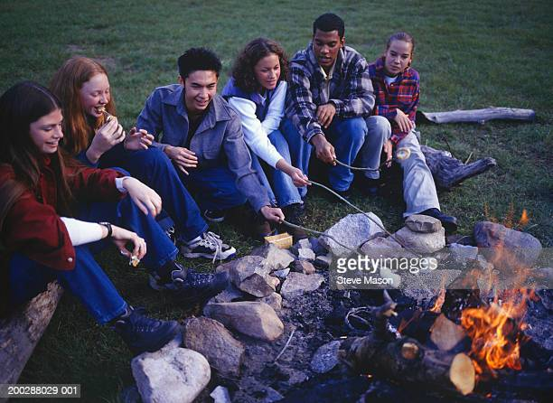Group of teenagers (14-15) (16-17) roasting marshmallows over campfire, elevated view