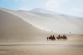 DUNHUANG,CHINA-MARCH 11: Tourists group is riding camels in the mingsha shan desert, a part of silk road on March 11, 2016 in Dunhuang, China.