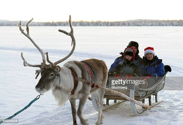 A group of tourists from Ireland enjoy a sled ride pulled by a reindeer organized by LaplandHotels near Muonio Finnish Lapland Finland Saturday...