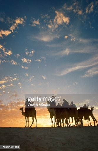 Group of Tuaregs into the sunset Festival au Deser