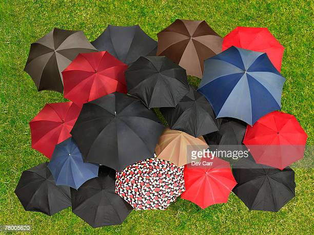 Group of umbrellas from above