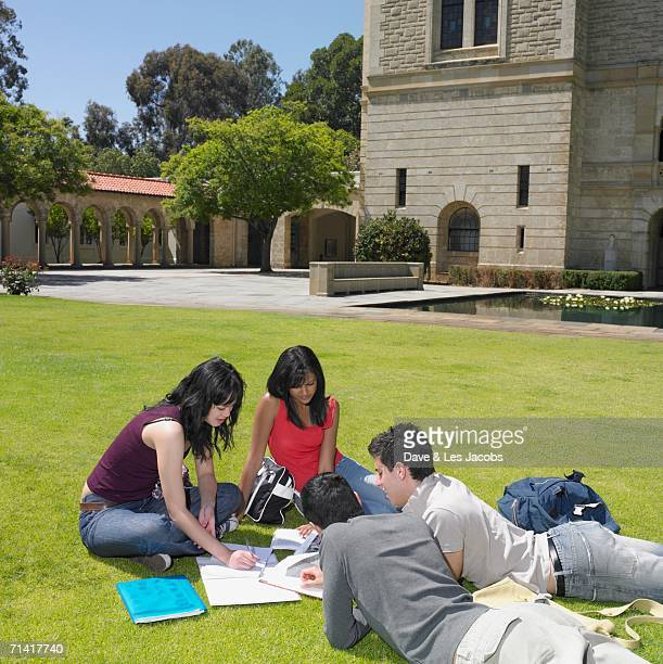 Group of university students studying outdoors