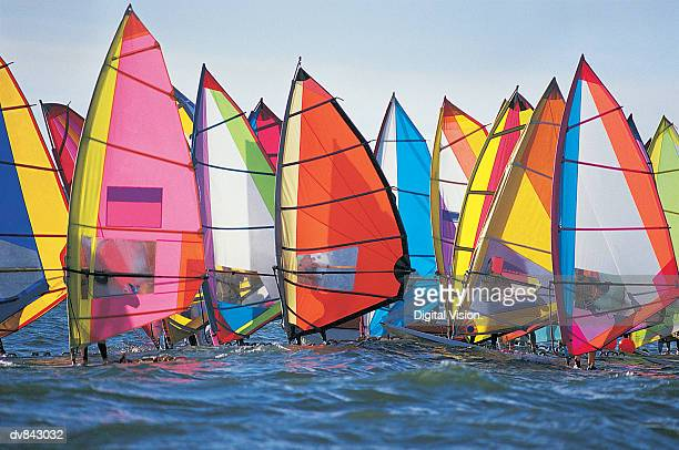 Group of Windsurfers on the Water