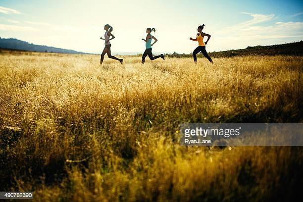 Gruppe von Frauen, die beim Laufen in der Natur