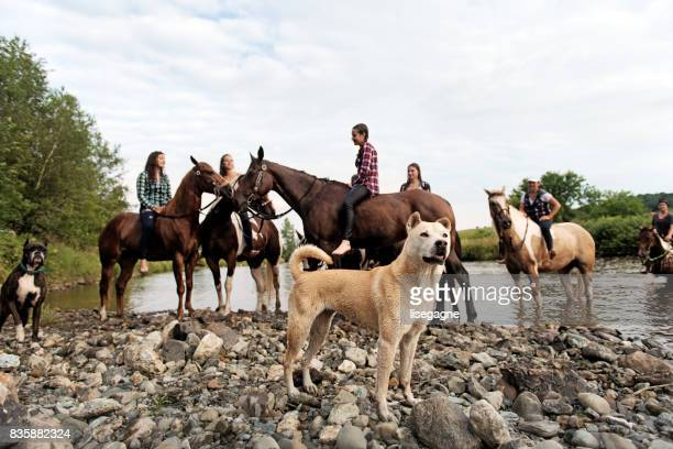 Group of young horse riders in the river