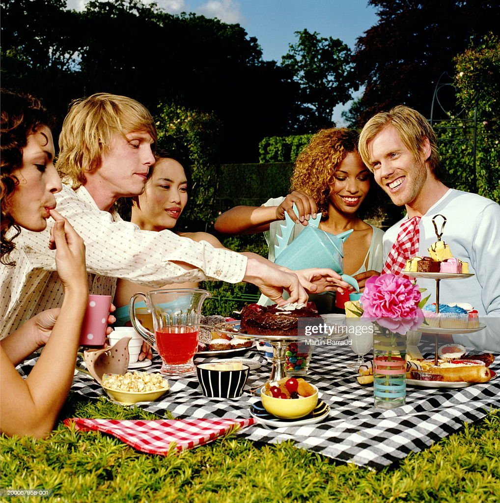 Group of young people having picnic in garden : Stock Photo