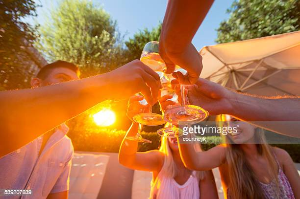 Group of young people toasting with wine glasses.