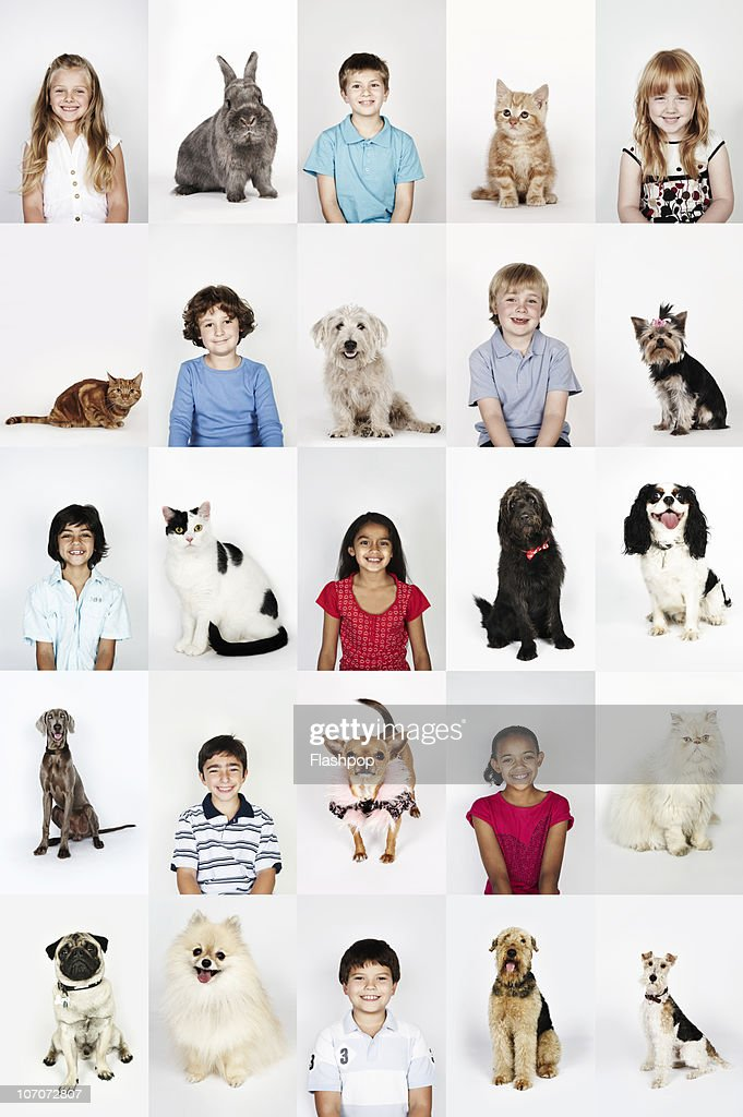 Group portrait of children and pet cats and dogs : Stock Photo