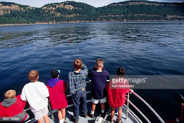 Group Watching Orca Pod from Boat