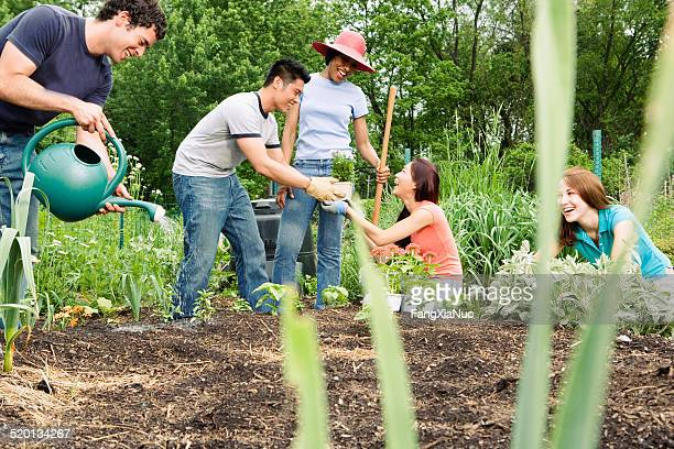 Group working in community garden