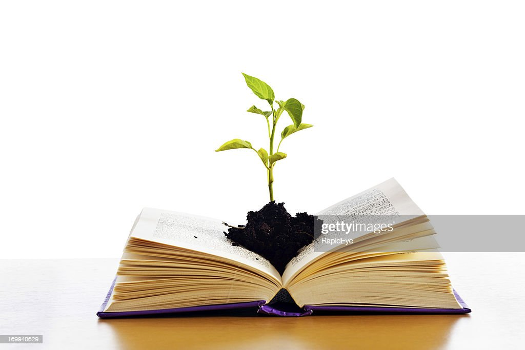 Grow your mind: open a book! : Stock Photo