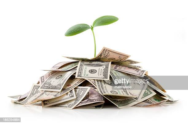 Growing investments. Heap of money with seedling.