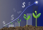 Growing sprouts with bar graph and blurred dollar sign background, business concept