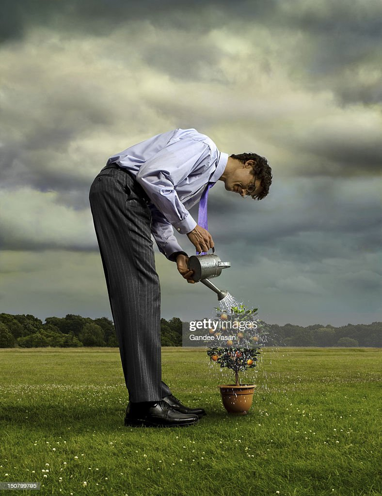 Growth : Stock Photo