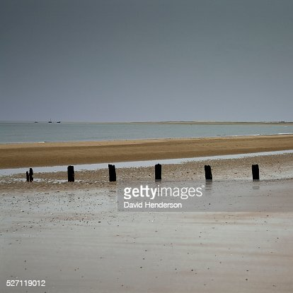 Groyne posts buried in wet sand : Stockfoto