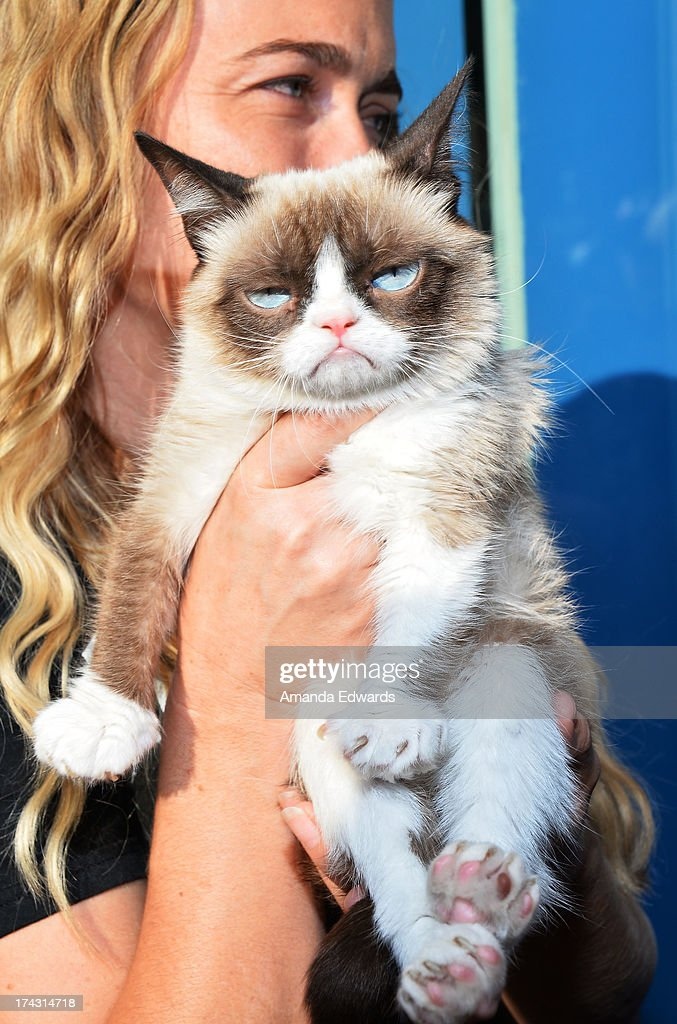 Grumpy Cat and her owner Tabatha Bundesen make an appearance at Kitson Santa Monica to promote her new book 'Grumpy Cat : A Grumpy Book' on July 23, 2013 in Santa Monica, California.