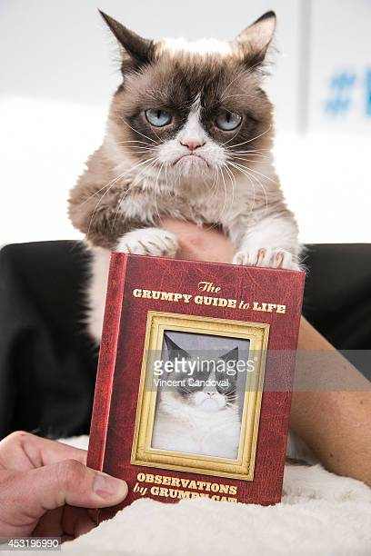 Grumpy Cat attends 'The Grumpy Guide To Life Observations By Grumpy Cat' book launch party at Kitson Santa Monica on August 4 2014 in Santa Monica...