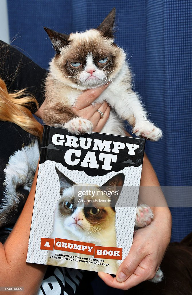 Grumpy Cat makes an appearance at Kitson Santa Monica to promote her new book 'Grumpy Cat : A Grumpy Book' on July 23, 2013 in Santa Monica, California.