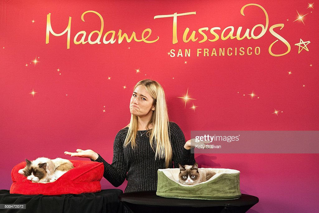 Grumpy Cat poses with her animatronic counterpart and owner Tabatha Bundesen at Madame Tussauds San Francisco on December 8, 2015 in San Francisco, California.