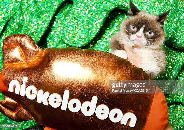 Grumpy Cat seen backstage at Nickelodeon's 28th Annual Kids' Choice Awards at The Forum on March 28 2015 in Inglewood California