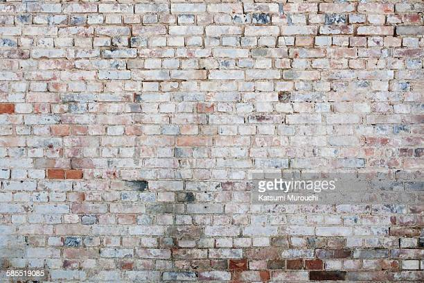 Grunge brick walls texture background