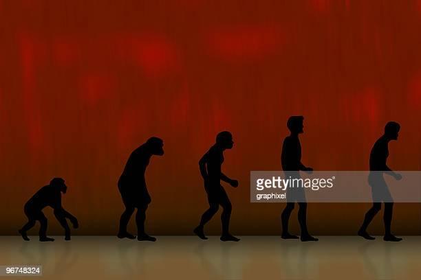 Grunge gráfico de evolução