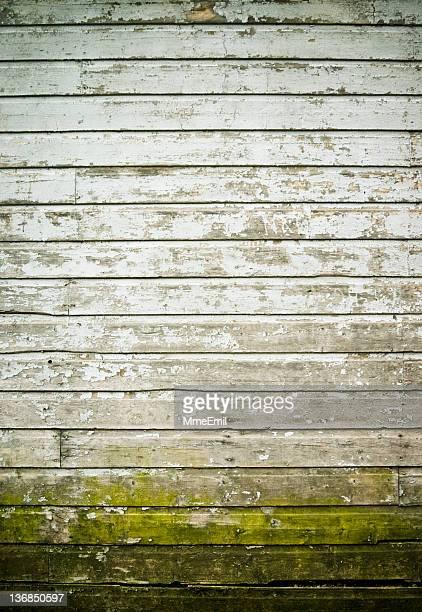 Grunge parete
